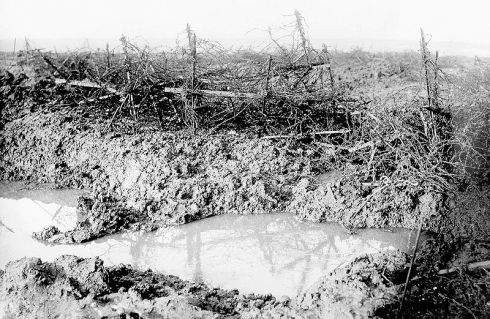 Barbed wire at Beaumont Hamel.