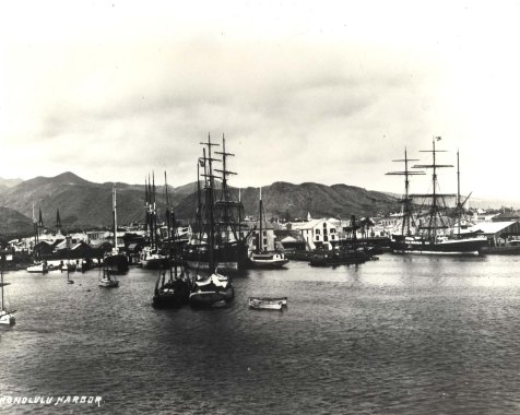 Honolulu Harbor in 1881.