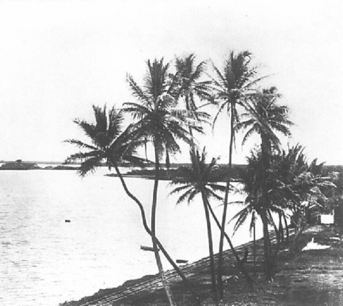 Pearl Harbor in the 1880s.