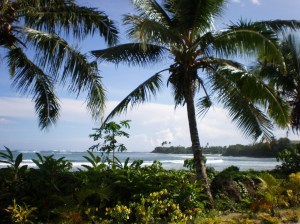Samoa coastline scenery.